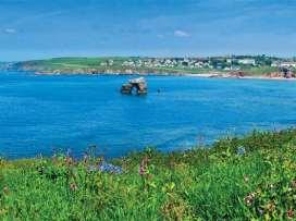 Sea Peep - Devon - 995150 - thumbnail photo 53