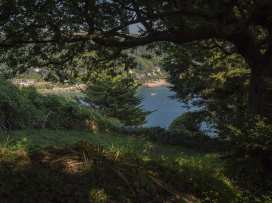 Overcombe - Devon - 995690 - thumbnail photo 44