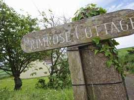 Primrose Cottage - Devon - 995717 - thumbnail photo 2
