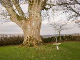 Low Park - Scottish Lowlands - 998045 - thumbnail photo 34