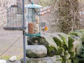 Low Park - Scottish Lowlands - 998045 - thumbnail photo 31