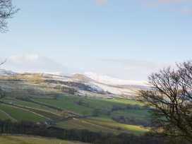 Tipperthwaite Barn - Yorkshire Dales - 998269 - thumbnail photo 15