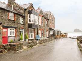 Salty Sea Dog - Cornwall - 999515 - thumbnail photo 1
