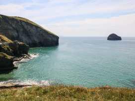 Salty Sea Dog - Cornwall - 999515 - thumbnail photo 28