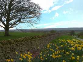 The Barn - Whitby & North Yorkshire - 999614 - thumbnail photo 11