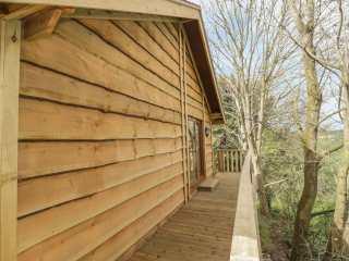 Oak Lodge - 1008108 - photo 5