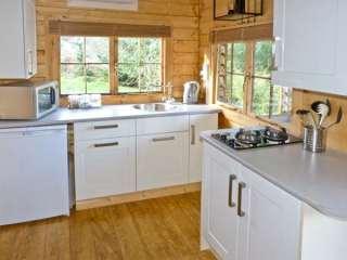 The Log Cabin - 12682 - photo 3