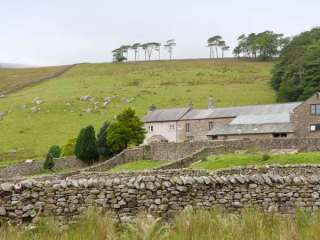 Kingsdale Head Cottage - 22410 - photo 9