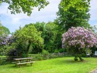 Lough Graney Cottage - 24965 - photo 2