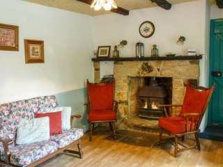 Lough Graney Cottage - 24965 - photo 3