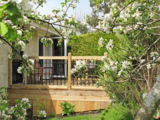 Bath Garden Rooms photo 1