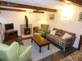 Galena Cottage - 919707 - photo 2