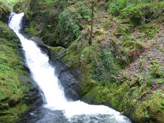 Dolgoch Falls - 923966 - photo 2