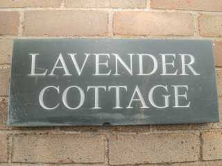 Lavender Cottage - 924847 - photo 4