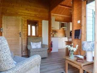 Violet Lodge - 932530 - photo 5