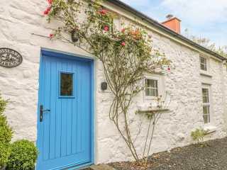 Rosslare Cottage - 942457 - photo 3