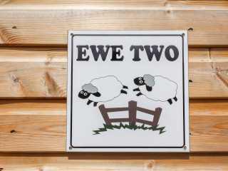 Ewe Two - 951606 - photo 3