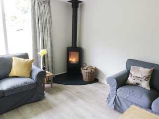 Rowan - Woodland Cottages - 958713 - photo 3