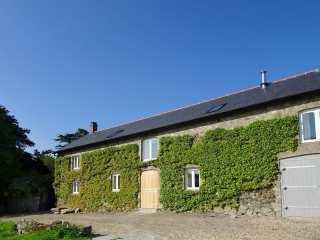 Dishcombe Cottage - 975858 - photo 1