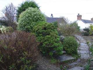 Fuchsia Cottage - 976303 - photo 9