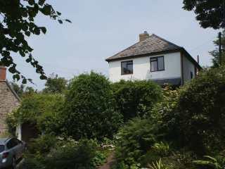 Camellia House - 979746 - photo 1