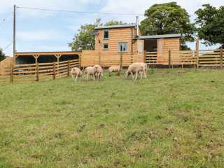 Shepherds Cabin at Titterstone - 981606 - photo 1
