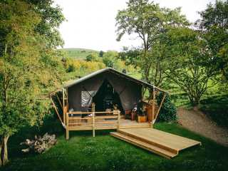 Stellar Safari Lodge - 984103 - photo 1