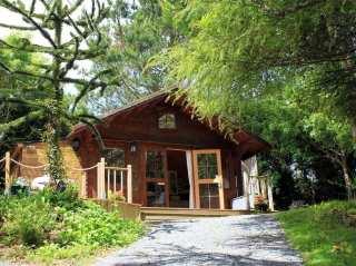 The Cabin - 988890 - photo 1