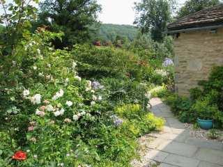 Neathwood Cottage - 988975 - photo 2