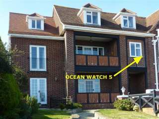 Ocean Watch 5 - 994506 - photo 1