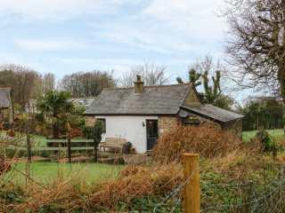 Beech Cottage - 998761 - photo 1