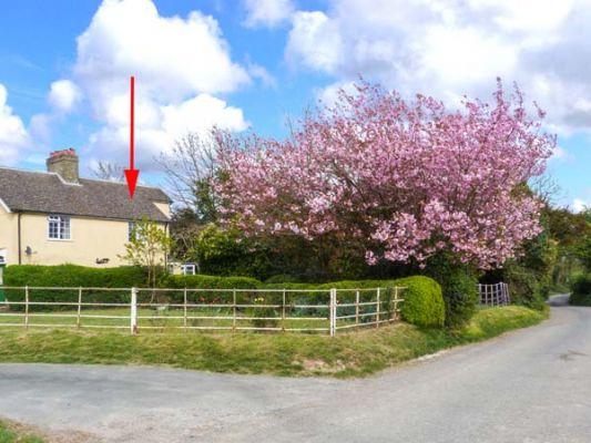 Church Farm Cottage photo 1