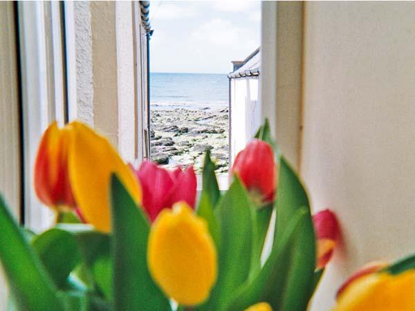 Ellie-Ann Cottage, Gardenstown
