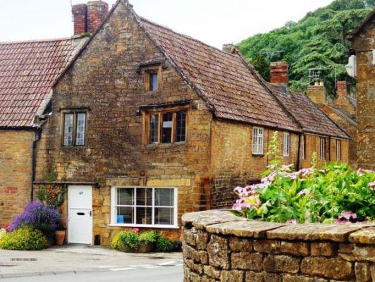 The Tudor Rose photo 1