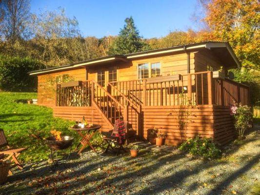 Cedar Lodge photo 1