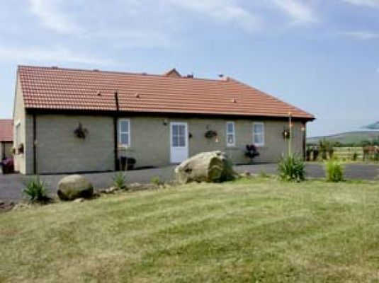 Willows Stable photo 1