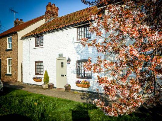 Clara's Cottage photo 1