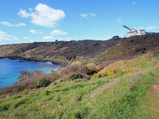 Gannet Watch photo 1