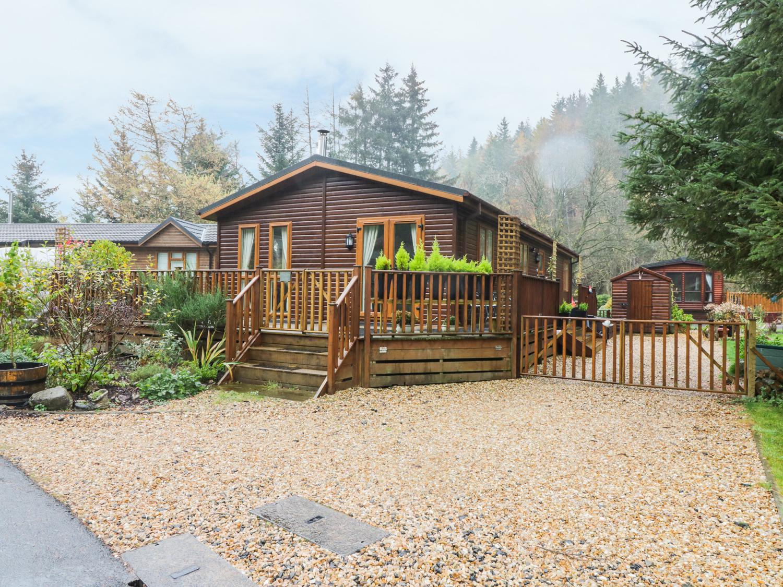 Pine Tree Lodge, Dollar