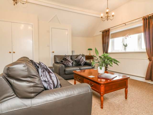 Penthouse photo 1
