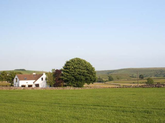 The Croft at Balmaha - 25790 - photo 1