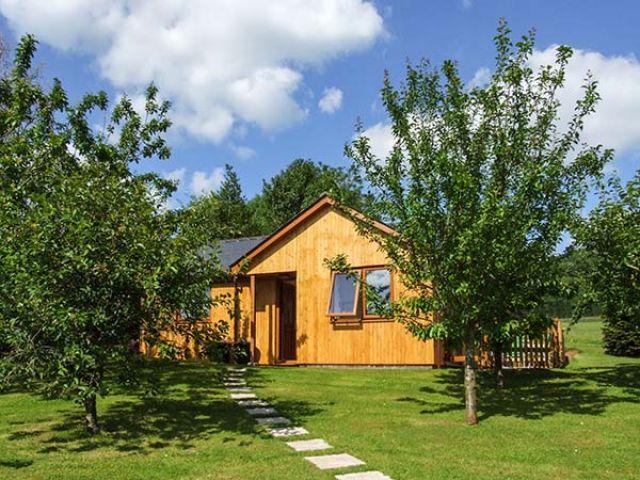 Orchard Cottage - 913250 - photo 1