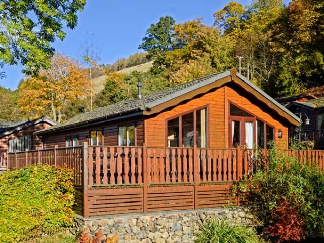 Bluebell Lodge - 923880 - photo 1