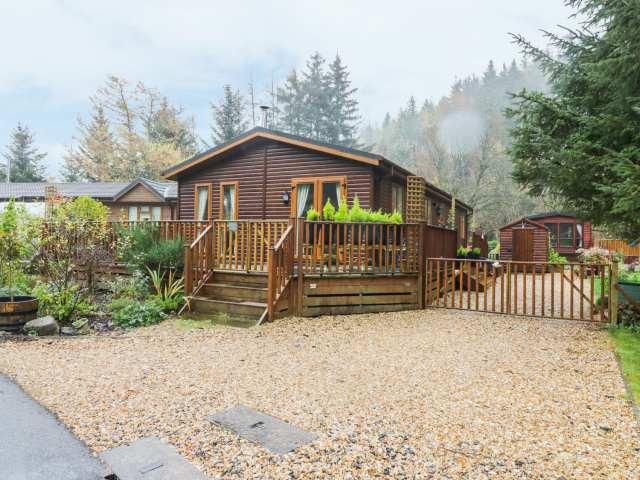 Pine Tree Lodge - 967770 - photo 1